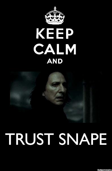 Is Snape a Bad Teacher?