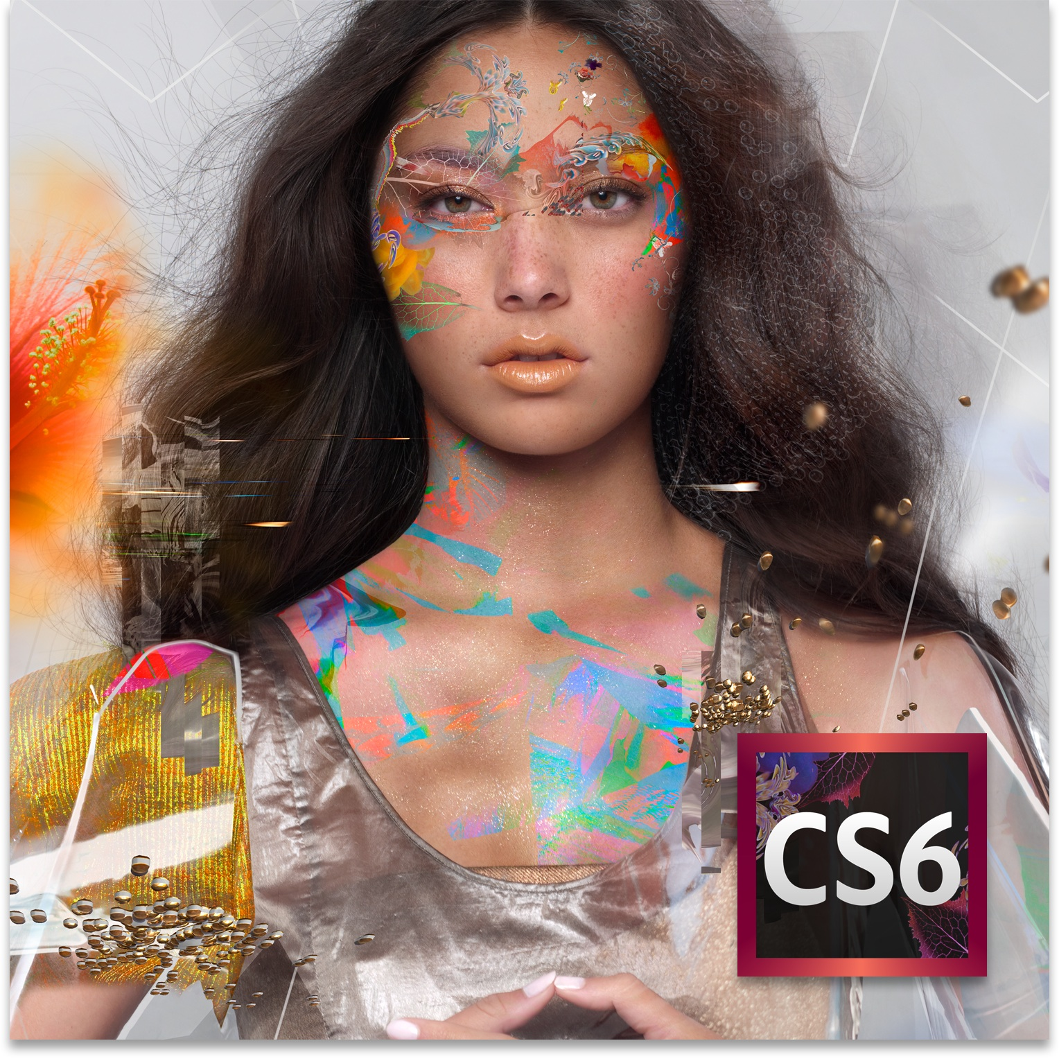 Adobe Creative Cloud and Creative Suite 6